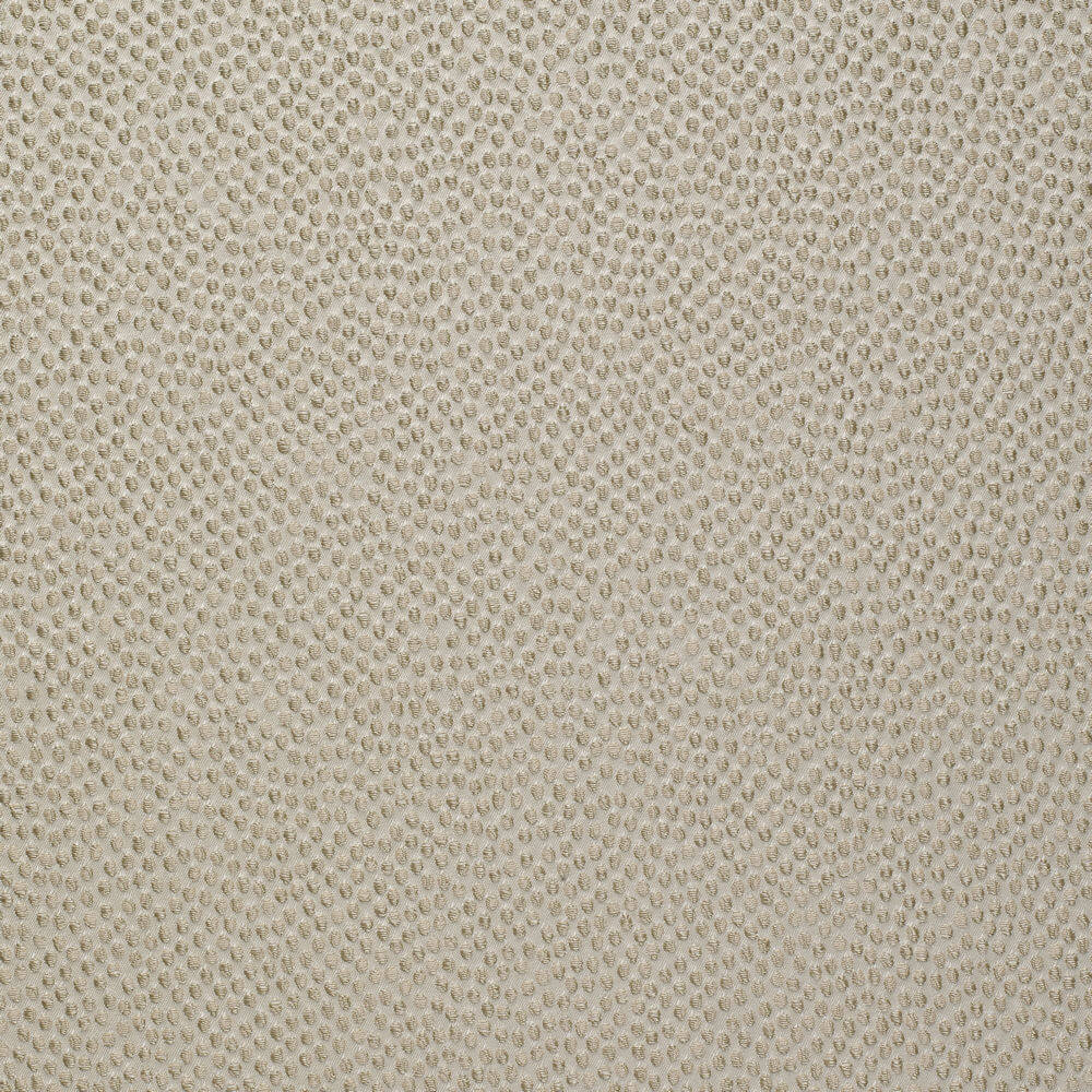 James Hare Shagreen Silk Fabric Lentil